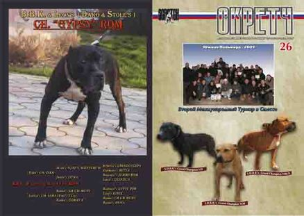 The Scratch - Russian Journal About American Pit Bull Terrier